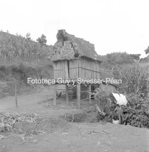 Granero para guardar maíz en un campo mazateco. 1956.